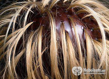 Как правильно сделать мелирование волос в домашних условиях