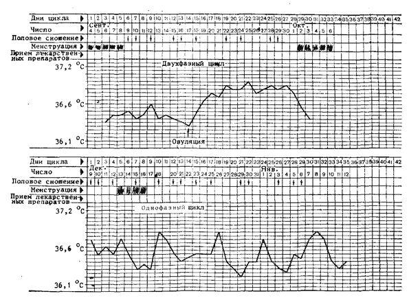 двухфазный овуляторный цикл и монофазный ановуляторный цикл